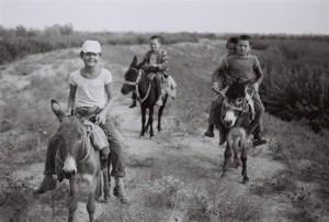 Отважные юные наездники ловко управляются с мустангами Узункыра.