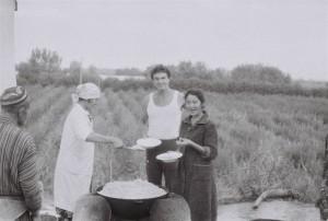 Хозяева полевого стана приготовили шикарный плов.